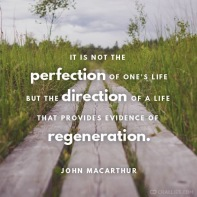 John MacArthur quote